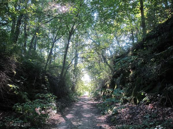 Elroy-Sparta trail, Elroy side, IMG_3383 (2).JPG