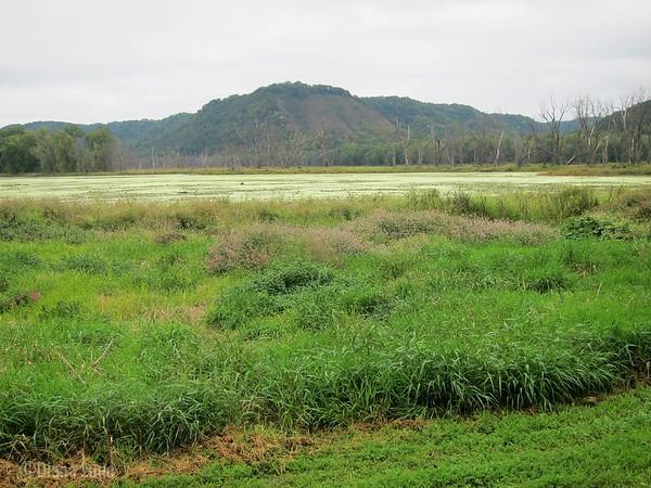 Blackhawk Park on Mississippi River, IMG_3256 (2).JPG