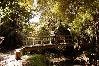 2004.03.01 Auckland, New Zealand
