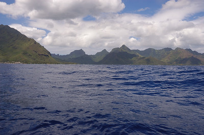 2005-10-13 dolphin watching, Moorea, French Polynesia