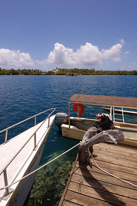 2005-10-18 shark feeding, Huahine, French Polynesia