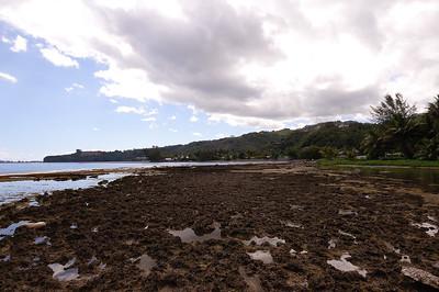 2005-10-07, Coral tidepools, Tahiti, French Polynesia