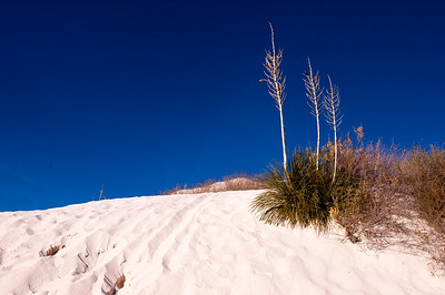 2005-12-28, White Sands National Monument, New Mexico