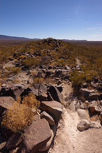 2005-12-28, Three Rivers Petroglyph Site, New Mexico