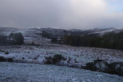 2011.02.06 Half Moon Bay Snow