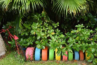 2017.01, Rarotonga, Cook Islands