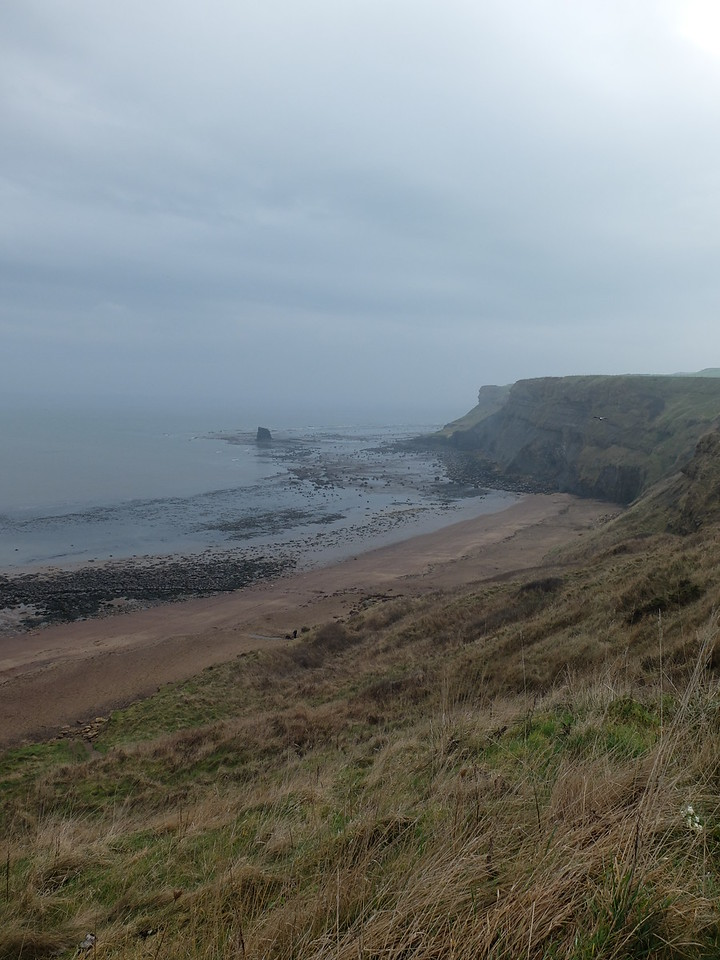 View over Whitby