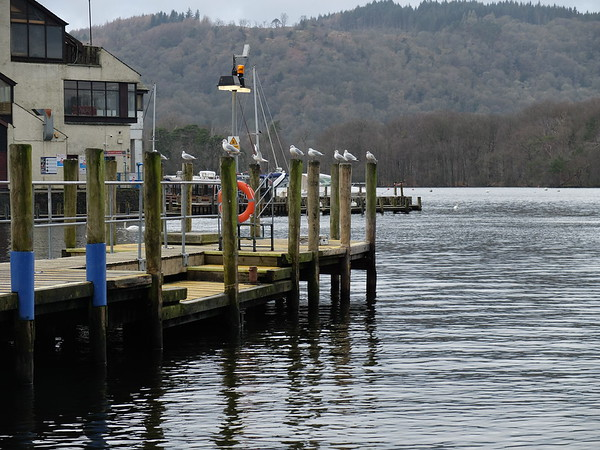 Trip to Windermere