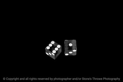 015-dice_7-studio-14dec18-09x06-009-500-bw-3854