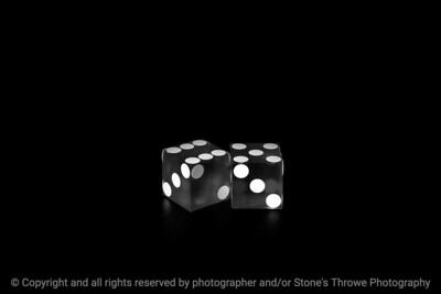 015-dice_11-studio-14dec18-09x06-009-500-bw-3911