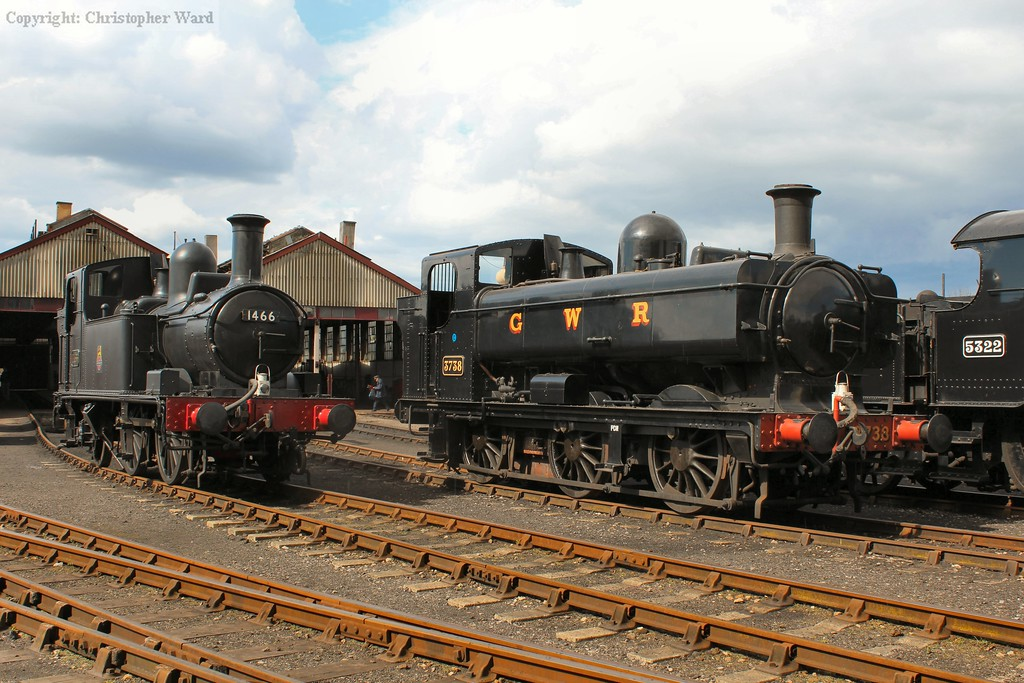 3738 and 1466 sit in the sunshine