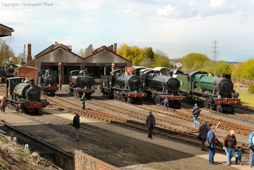 Black predominates with four of the representatives representing BR or GWR varieties