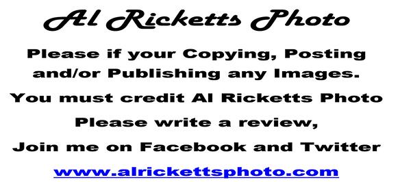 Al Ricketts Photo