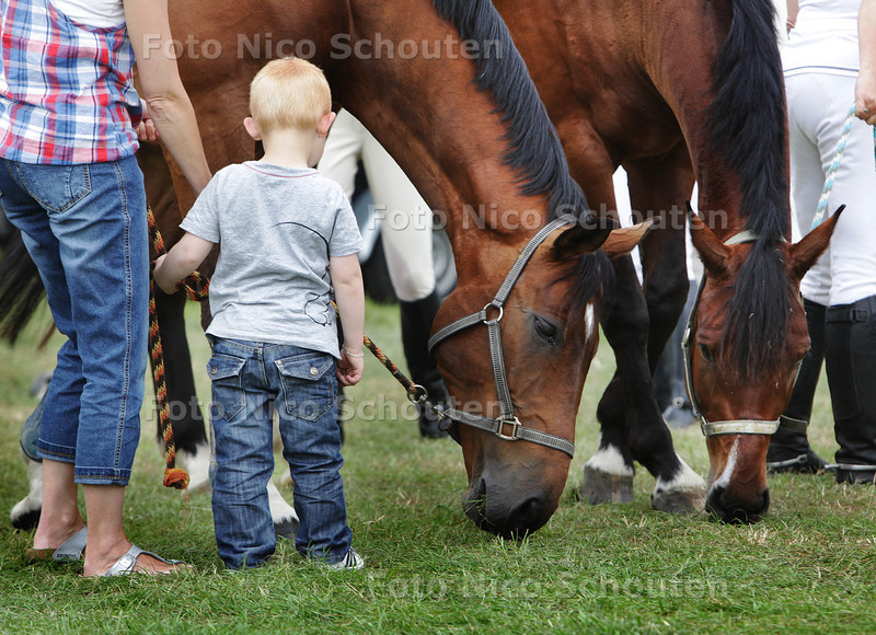 Stompwijkse Paardendagen - STOMPWIJK 20 JULI 2013 - FOTO NICO SCHOUTEN