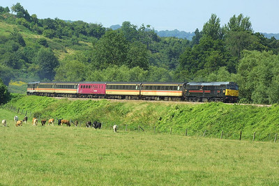 31128 leads 31454 as they growl through the Limpley Stoke Valley south of Bathampton with 2O90 1428 SO Bristol Temple Meads-Weymouth on 31/07/2004.