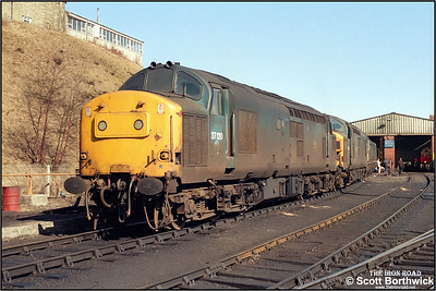 37120+37115 are stabled at Buxton TMD (BX) on 19/03/1986. 20059+20043 are visible behind.