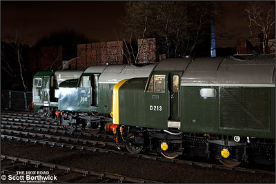 D213 'Andania', D335 & D8132 stand in the yard at Barrow Hill TMD on 05/02/2011.