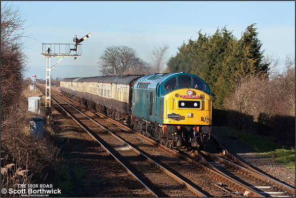Class 40: All Images