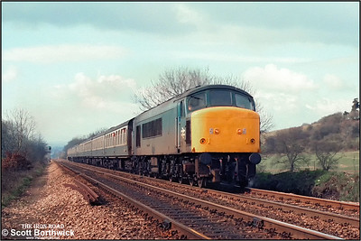 45015 slogs up the Lickey Incline at Vigo whilst in charge of 1E51 0906 Bristol Temple Meads-York relief on 09/04/1985.