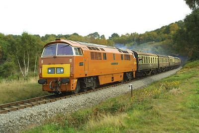 D1015 emerges from Foley Park tunnel whilst working the 1200 Kidderminster-Bridgnorth service on 04/10/2002 during the Severn Valley Railways Autumn Diesel Gala.