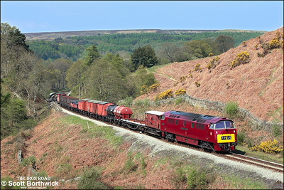 D1015 'Western Champion' passes Thomason Foss on 09/05/2008 whilst in charge of 7P03 1030 Grosmont-Pickering demonstration freight.