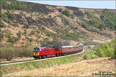 D1015 'Western Champion' opens up as it accelerates away from the Newtondale reverse curves whilst working 2G70 1330 Pickering-Grosmont on 10/05/2008.
