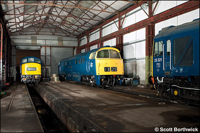 D1048 'Western Lady' has 25321 & 45108 for company as it undergoes maintenance inside the shed at Swanwick TMD on 12/12/2009.