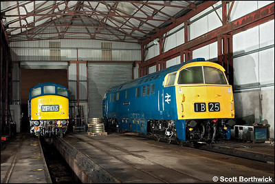 D1048 'Western Lady' undergoes maintenance inside the shed at Swanwick TMD on 12/12/2009. 45108 stands alongside.