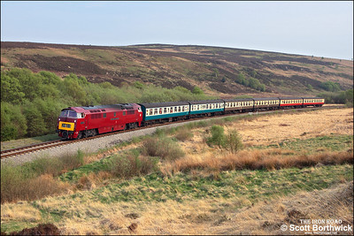 D1015 'Western Champion' passes Fen Bog whilst working 2G78 1730 Pickering-Grosmont on 10/05/2008.