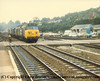 "A convoy of light engines passes Exeter St Davids led by Class 50 Diesel Locomotive number 50 012 named ""Benbow"", with 31 124 and 33 005 in tow.<br /> 4th August 1986"