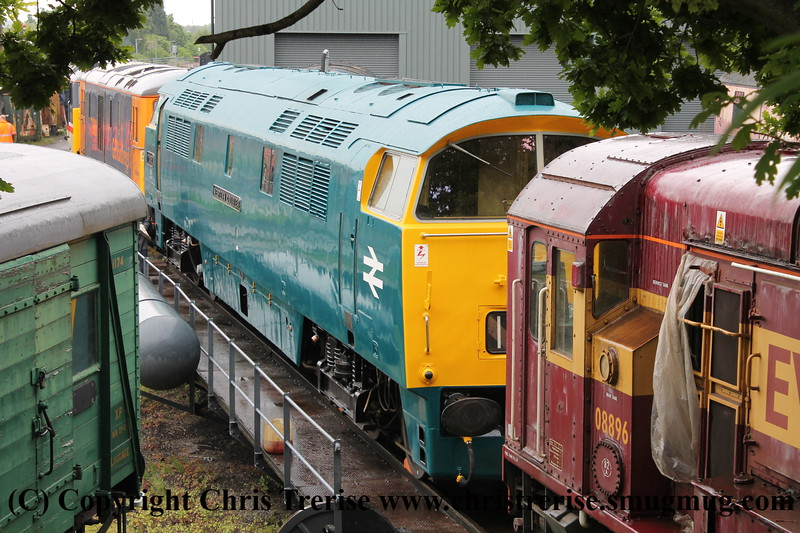 "Class 52 Western Diesel Locomotive number D1062 named ""Western Courier"" shunts at Kidderminster.  Class 08 Diesel Shunter number 08 896 and Class 73/9 number 73 965 also visible.<br /> 19th May 2017"