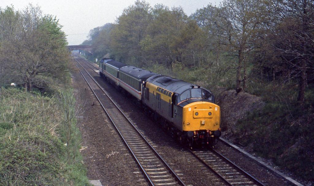 37207, down stock move, Willand, near Tiverton, 30-4-93.