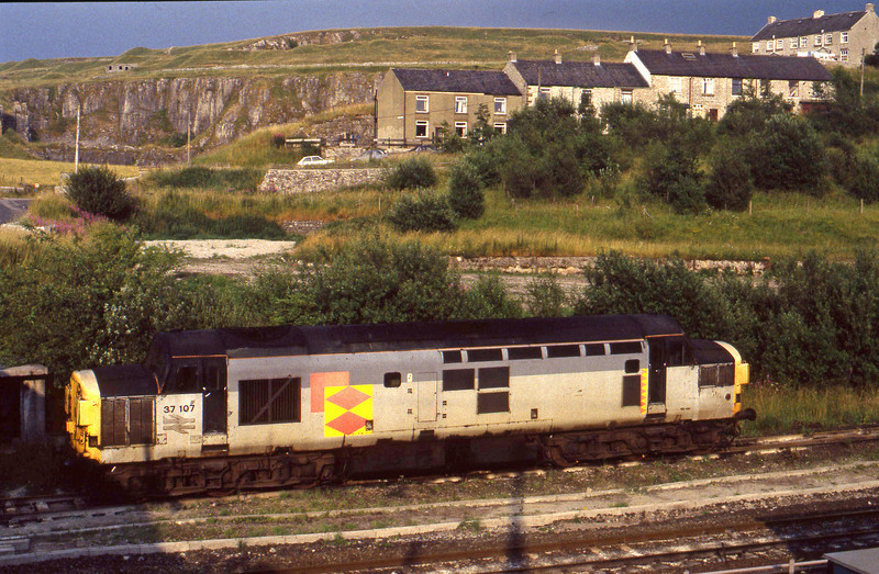 37107, stabled,  Peak Forest, 27-7-94.