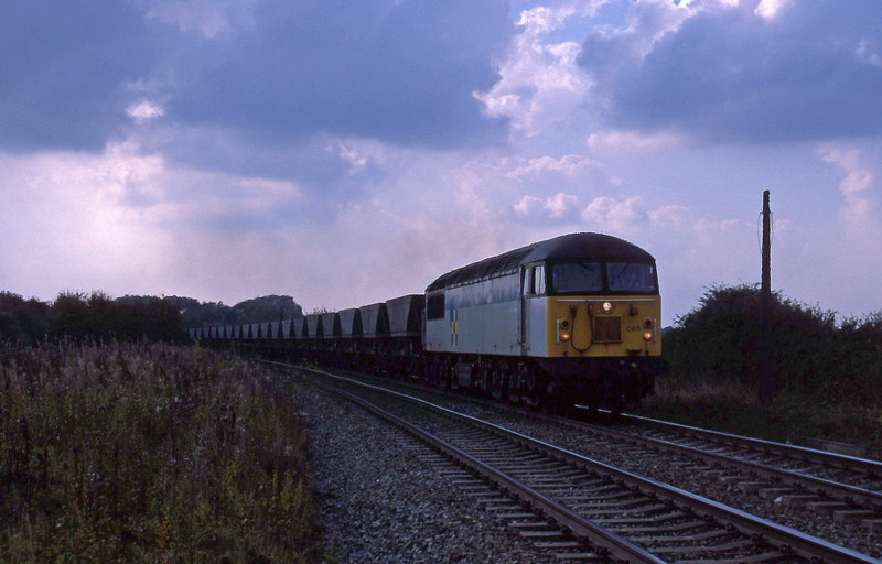 56065, down mgr empties, Gascoigne Wood, 21-9-94.