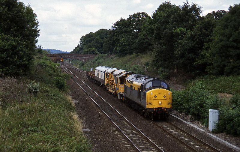 37258, down departmental, Willand, near Tiverton,19-7-95.
