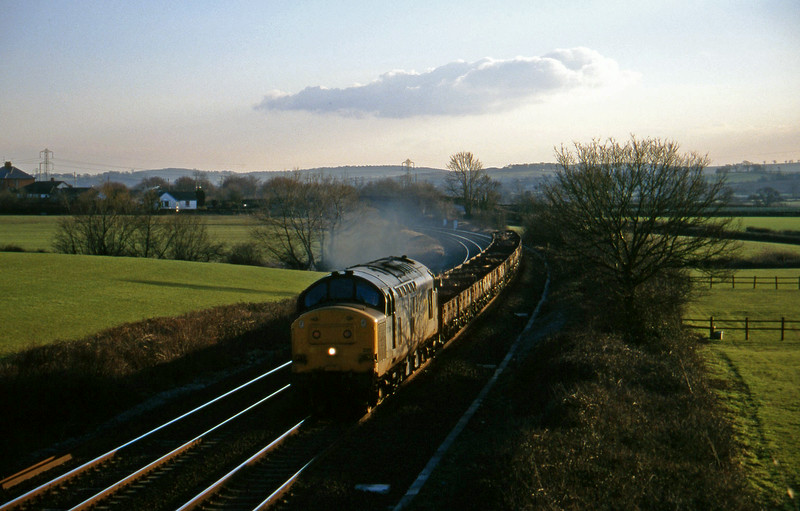 37229, up spoil, Willand, near Tiverton, 21-2-96.