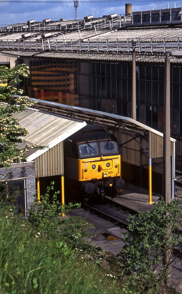 47229, stabled, Tinsley, Sheffield, 12-6-96.