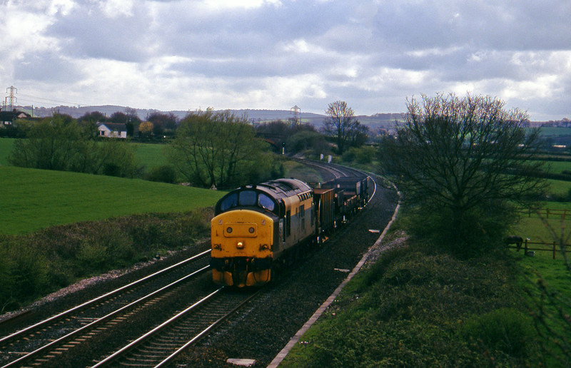 37258, up departmental, Willand, near Tiverton, 1-5-96.