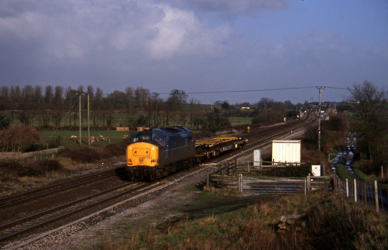 37293, down departmental, Cogload, 13-1-98.