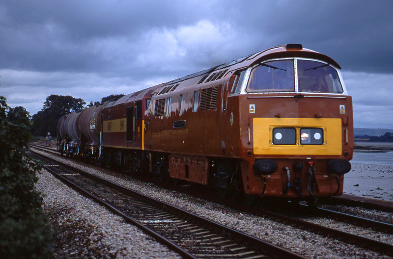 D1015/60085, 10.00 Cliffe Vale-St Blazey, Powderham, near Starcross, 29-8-02.