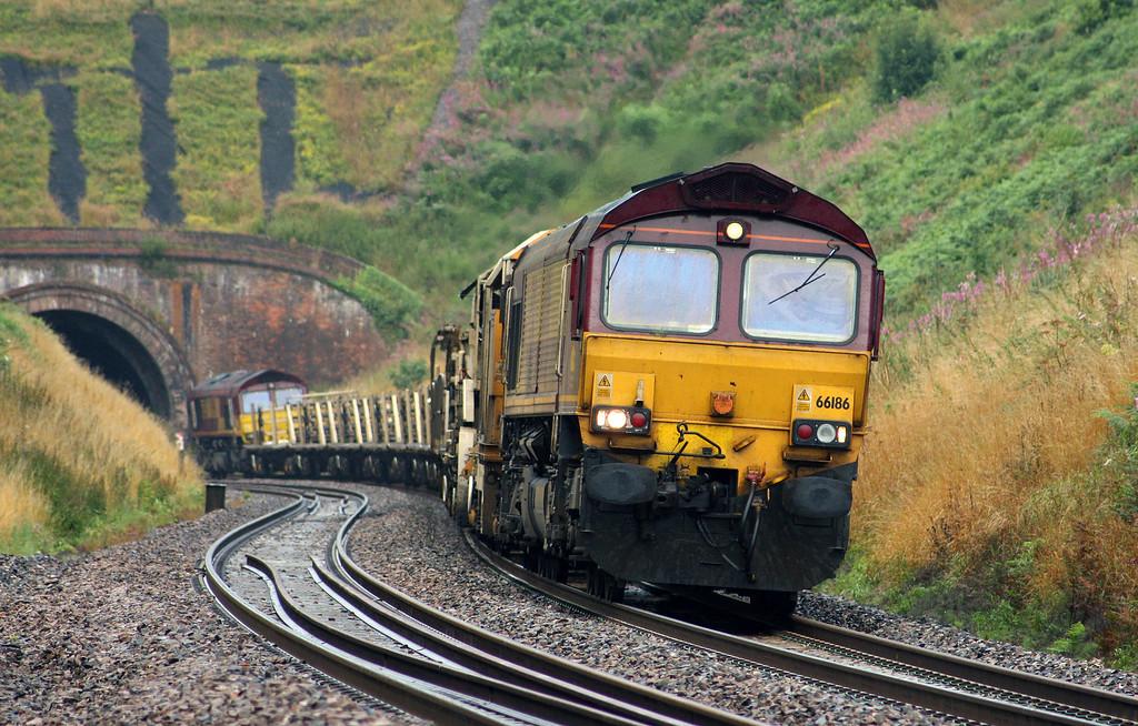 66186/66250, 05.50 Truro Penwithers Junction-Westbury, Marlands, near Wellington, 4-8-10.