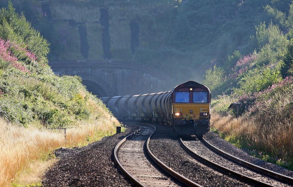 66009, 11.50 St Blazey-Newport Alexandra Dock Junction, Marlands, near Wellington, 16-8-13.