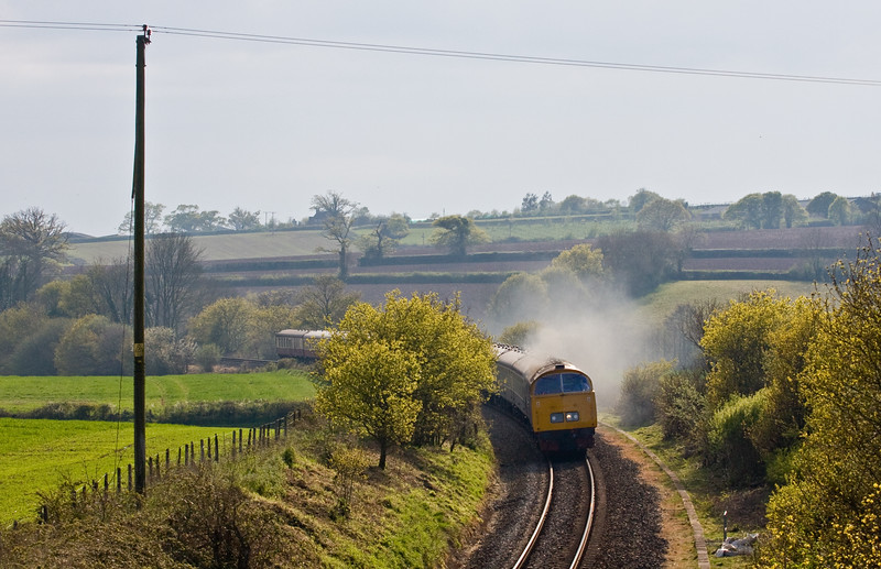 D1015, 16.50 Okehampton-London Waterloo. The Western Challenger, Feniton, near Honiton, 7-5-16.