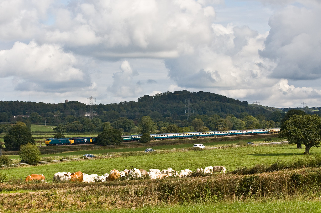 50007/50049, 06.13 Burton-on-Trent-Kingswear, via Worcester, The Torbay and Dart Explorer, Pugham Crossing, near Burlescombe, 16-9-17.