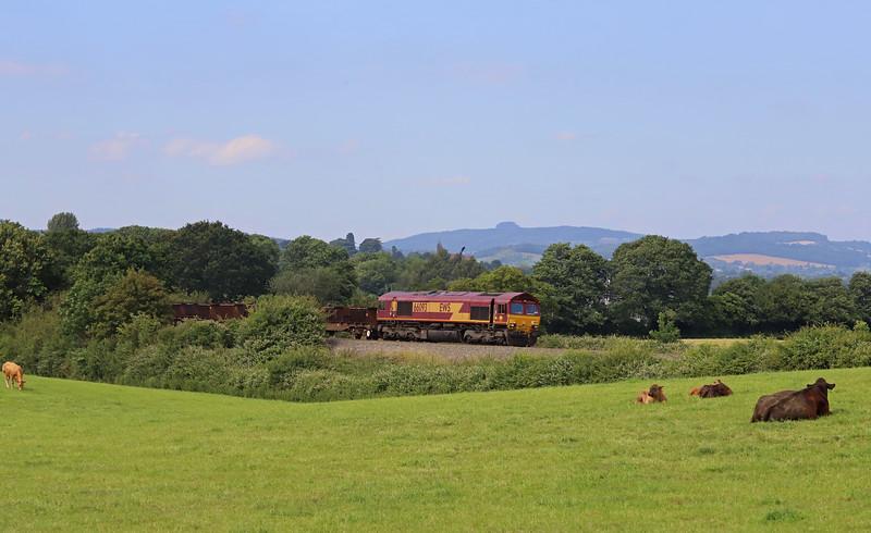 66093, 10.28 Corby-Margam, Box Farm, Awre, Gloucestershire, 5-7-19.