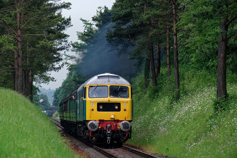 47579 passes through the pine trees with the 11:35 Alresford - Alton, during the Diesel Gala <br /> on 1st June 2018.