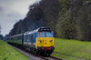 50027 at College Crossing, with the 11:45 Alresford - Alton, <br /> during the Diesel Gala on 27th April 2013.