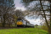 50027 at Rookwood Lane, with the 14:20 Alton - Alresford, <br /> during the Diesel Gala on 23rd April 2016.