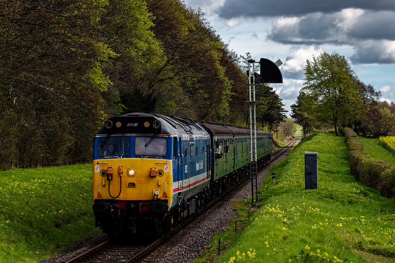 50027 passes the Ropley Down Outer Home signal, with the 10:00 Alton - Alresford, <br /> private hire RAT, on 30th April 2016.