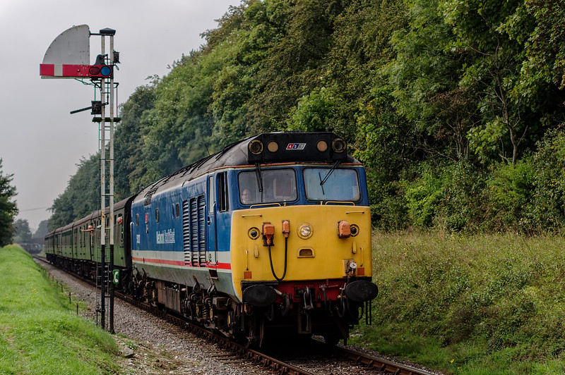 50027 passes the Ropley Down Outer Home signal, with the 11:55 Alresford - Alton, <br /> during the Diesel Gala on 7th September 2014.